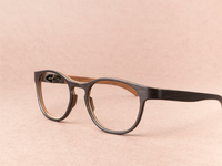 ROLF spectacles Anglia fx 93